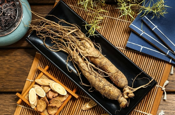 Ginseng: its virtues on your body