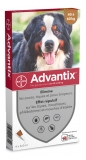 Bayer Advantix Big Dogs 40 to 60 kg 4 Pipettes