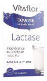 Bouillet Lactose Intolerance 60 Tablets (to consume preferably before the end of 12/2020)