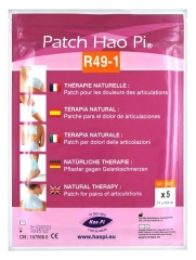 Hao Pi Patch R49-1 Pains of Articulations x5