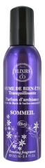 Elixirs & Co Sleep Treating Fragrance 100ml