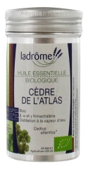 Ladrôme Organic Essential Oil Atlas Cedar 10ml