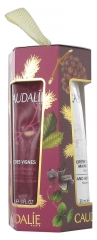 Caudalie Hand and Nail Creams Trio Set