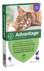 Bayer Advantage 80 Antifleas Solution for Cat and Rabbit of 4kg and More 6 Pipettes