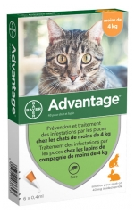 Bayer Advantage 40 Antifleas Solution for Cat and Rabbit Under 4kg 6 Pipettes