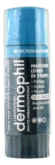 Dermophil Indien Daily Protection Lips 4g