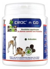 Leaf Care Croc'n Go Dog Pellets 100g