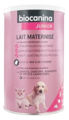 Biocanina Junior Lait Maternisé 400 g