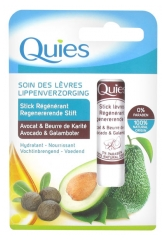 Quies Lippenpflege Regenerationsstab Avocado & Sheabutter 4,5 g