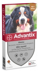 Bayer Advantix Big Dog 40 bis 60 kg 6 Pipetten