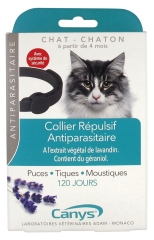 Canys Collier Antiparasitaire Insectifuge Chat et Chaton 1 Collier