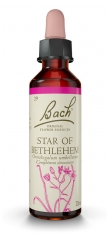 Fleurs de Bach Original Star of Bethlehem 20 ml