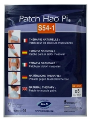 Hao Pi Patch S54-1 Douleurs Musculaires 5 Patchs