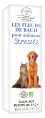 Elixirs & Co Bach Flowers for Pets Stress 10ml