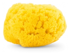 Chicco Natural Sea Sponge Medium 0 Month and +