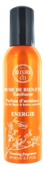Elixirs & Co Energy Well-Being Mist Invigorating 100ml