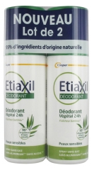Etiaxil Déodorant Végétal 24H Spray Lot de 2 x 100 ml