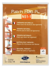 Hao Pi Patch N51-1 Pains of Ligaments 5 Patches