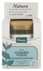 Kneipp Perfumed Candle Goodbye Stress Watermint Rosemary
