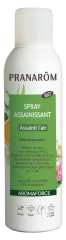 Pranarôm Aromaforce Organic Sanitizing Spray 150ml