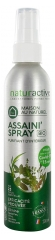 Naturactive Assaini'Spray Bio 200 ml