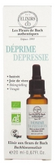 Elixirs & Co Depression 20 ml