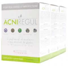 Arlor Natural Scientific Acniregul Formule Renforcée Lot de 3 x 60 Capsules