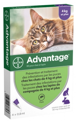 Bayer Advantage 80 Antifleas Solution for Cat and Rabbit of 4kg and More 4 Pipettes