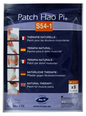 Hao Pi Patch S54-1 Muscle Pains x5