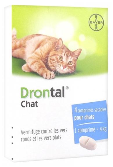 Bayer Drontal Entwurmung Katze 4 Tabletten